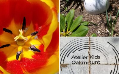 Atelier Kids Early Learning & Care: Redefining Early Learning Education in Toronto