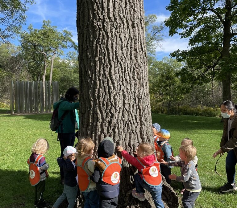 10 Impactful Benefits of Nature Play – shared by HiMama